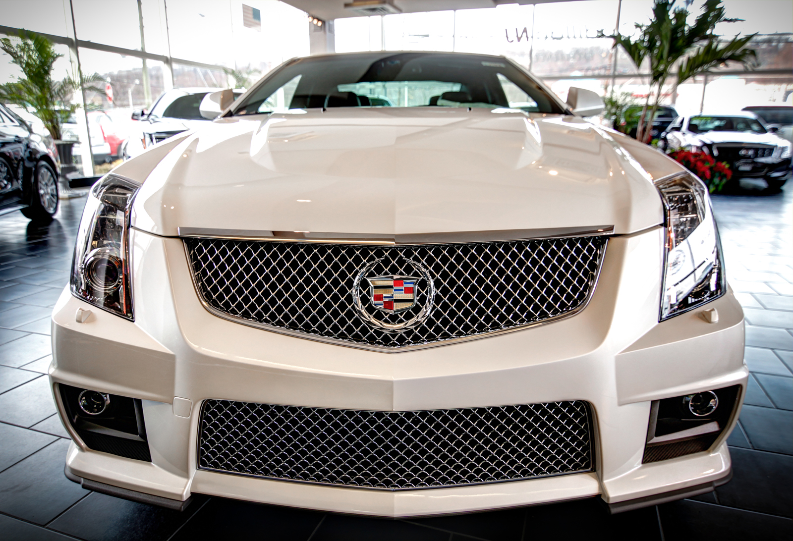 NJ Google Business View Crown Cadillac In Watchung - Cadillac dealers in nj