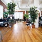 Fassforward Consulting - Pelham, NY