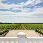 Long Island Vineyard Virtual Tours